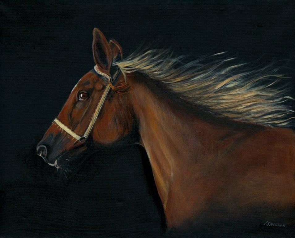 Freedom Chestnut horse